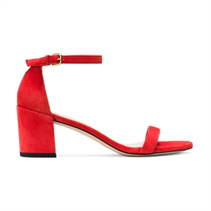 SIMPLE NEW-party-Scarpa
